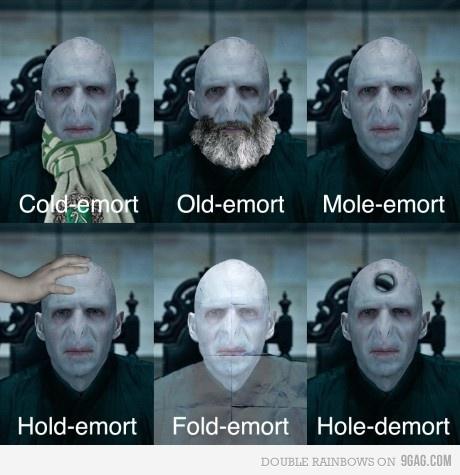 Voldemort-Funnies-lord-voldemort-23295421-460-475.jpg